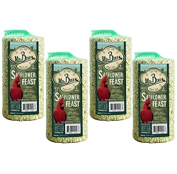 Safflower Feast Small Seed Cylinder 32 oz. 4-Pack