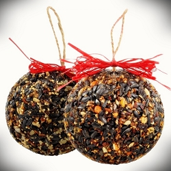 Seed and Nut Ornament Balls 15 oz. 8/Pack