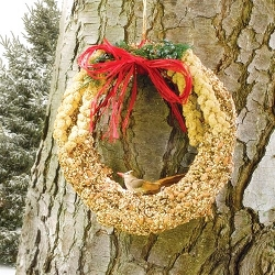 Rustic Edible Birdseed Wreath 10