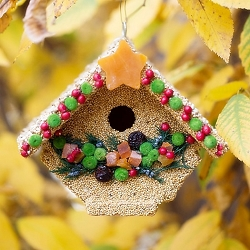 Fruit Casita Edible Birdhouse