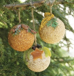 Fruit & Nut Seed Ball Ornaments 24/Pack