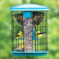 Caged Feeders