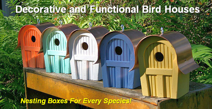 Decorative and Functional Bird Houses