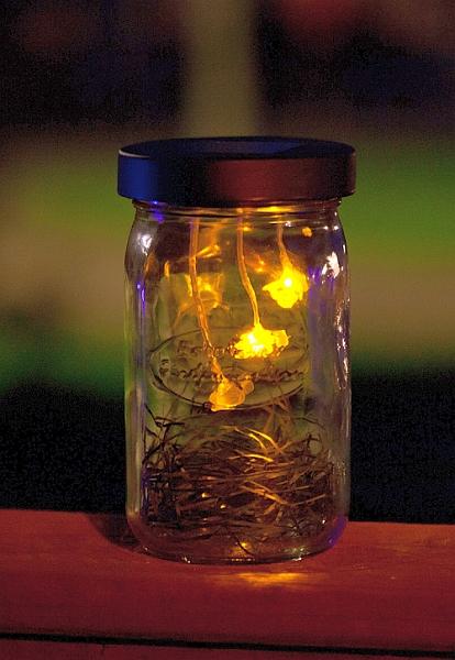 Solar Firefly Lantern Set Of 2