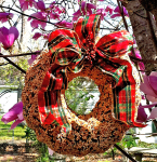 Seed Wreaths