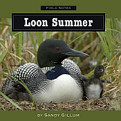 Common Loon Gifts