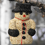 Edible Bird Seed Ornaments