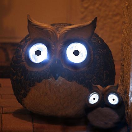 Garden Pals Solar Owl Accent Lights Set Of 2