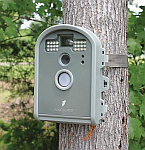 BirdCam, Wireless Nature Camera