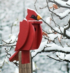 Amish Hand-Made Shaped Bird House Cardinal
