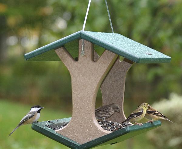 Birds choice recycled plastic hanging fly through bird for Plastic bird feeders