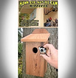 Cedar Birdhouse w/Wireless Hawk Eye Nature Video Camera