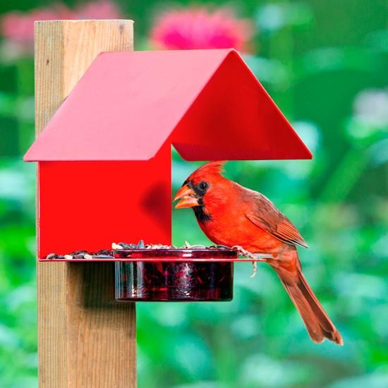 Fence/Post Bird Feeder Red