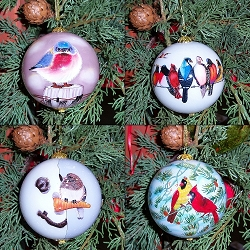 Songbird Series Ornament Collection Set of 4
