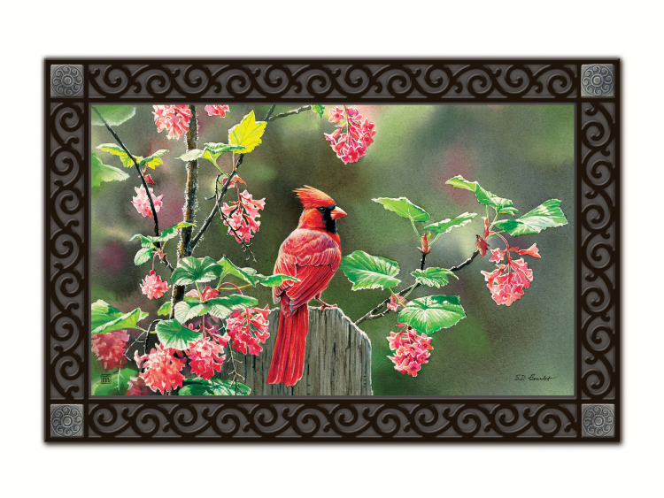 Cardinal Beauty Matmate Interchangeable Doormat
