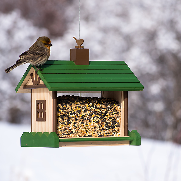 If you're a bird lover, Perky-Pet® is ready to help you with all your needs at admin-gh.ga We have resources for feeding Hummingbirds, Wild Birds and Orioles as well as a great selection of gorgeous and affordable Bird Feeders, Hummingbird Feeders, Wild Bird Feeders, Oriole Feeders, Feeder Accessories, Waterers and Birdhouses.
