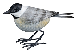 3-D Metal Garden Decor Sculpture Chickadee