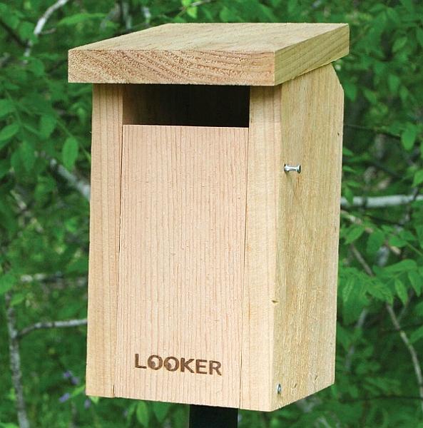 Sparrow Resistant Bluebird Slot Bird House Quality