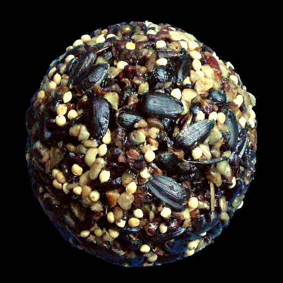 how to make bird food balls