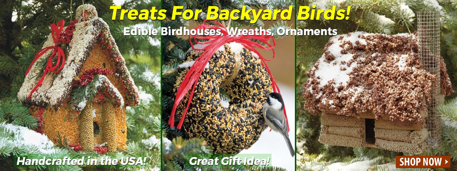 Edible Bird Feeders, Birdhouses, Wreaths, Ornaments