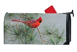 Winter Red Bird MailWrap