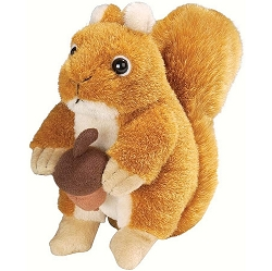 Audubon Red Squirrel