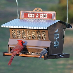 Rustic Farmhouse Absolute Feed & Seed Bird Feeder