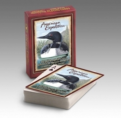Common Loon Wildlife Playing Cards 2 Decks
