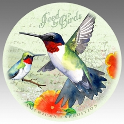 Hummingbird Vintage Series Absorbent Stone Coaster Set of 4