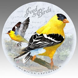 American Goldfinch Vintage Series Absorbent Stone Coaster Set of 4