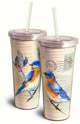 Eastern Bluebird Vintage Series 24oz Acrylic Tumbler Set of 2