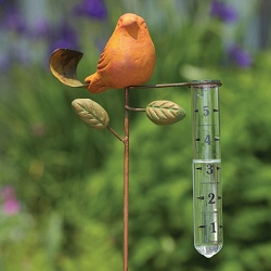 Bird Rain Gauge Spice