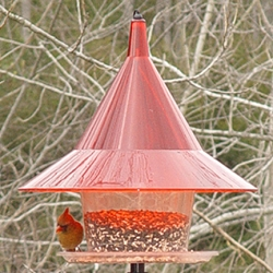 Sky Cafe Bird Feeder Ruby Red