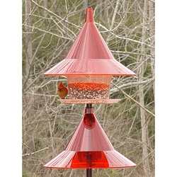 Sky Cafe Bird Feeder Ruby Red with Pole Baffle Kit