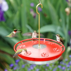 HummZinger HighView Excel 16 oz. Hummingbird Feeder