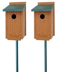 Woodlink Going Green Bluebird House Package w/5-Piece Pole Kit