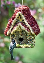Backyard Bird Cottage Edible Birdhouse