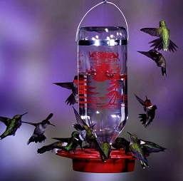 Best-1 32 Oz Hummingbird Feeder