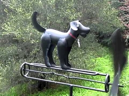 Black Lab Whirligig w/Pole
