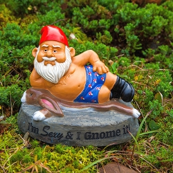 Sexy and I Gnome It Garden Gnome