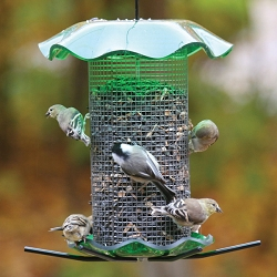 Forever Seed Feeder 3 Quart Green
