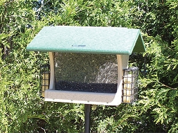Birds Choice Recycled Plastic 7 Quart 2-Sided Hopper Feeder w/Suet Cages