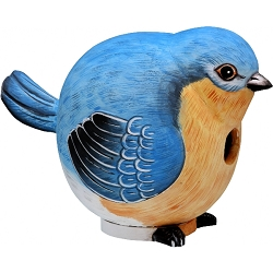 Bluebird Ball Birdhouse