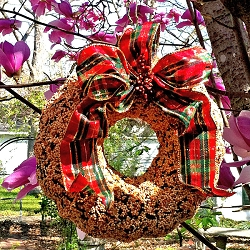 Holiday Delight Edible Bird Seed Wreath