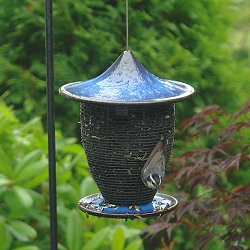 Alcyon Pagoda Bird Feeder Cobalt Blue