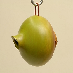 Mango Tree Ellipse Bird Home Green