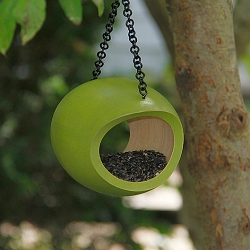 Mango Tree Fly-Through Bird Feeder Green