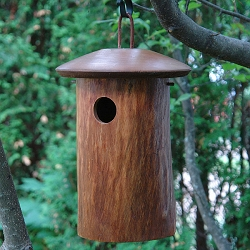Mango Tree Natural Bluebird House