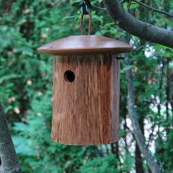Mango Tree Natural Chickadee House