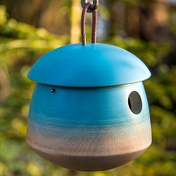 Mango Tree Tumble Bird Home Blue
